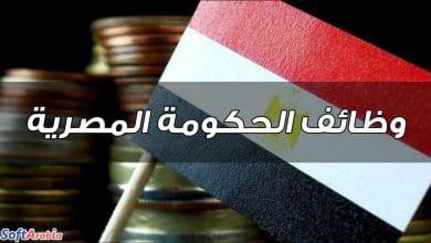 وظائف الحكومة المصرية
