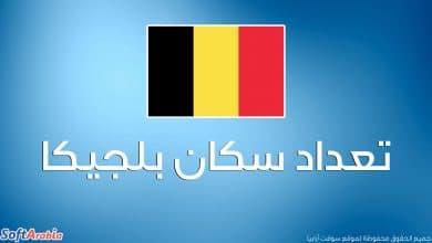 عدد سكان بلجيكا