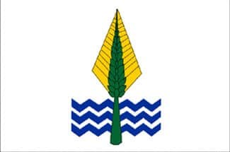 Flag of New Valley
